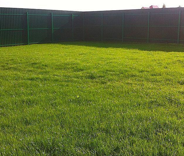 как сделать газон самому