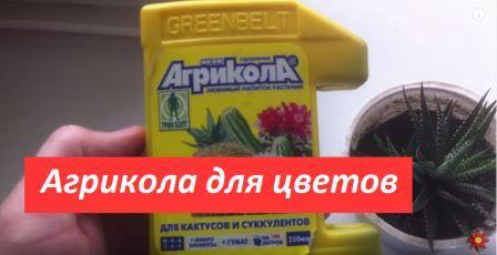 агрикола для цветов удобрение отзывы инструкция