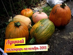 лунный календарь на ноябрь 2015 года