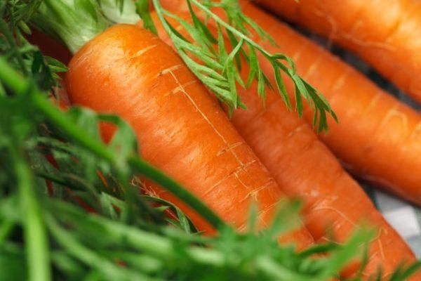 когда-выкапывать-морковь-по-лунному-календарю
